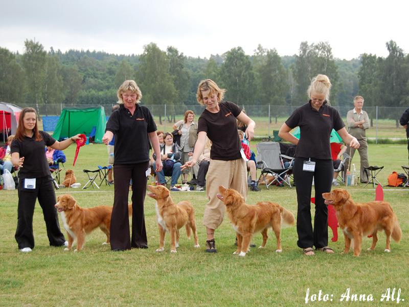 http://specialen.tollarklubben.se/2007/07_uppf.jpg